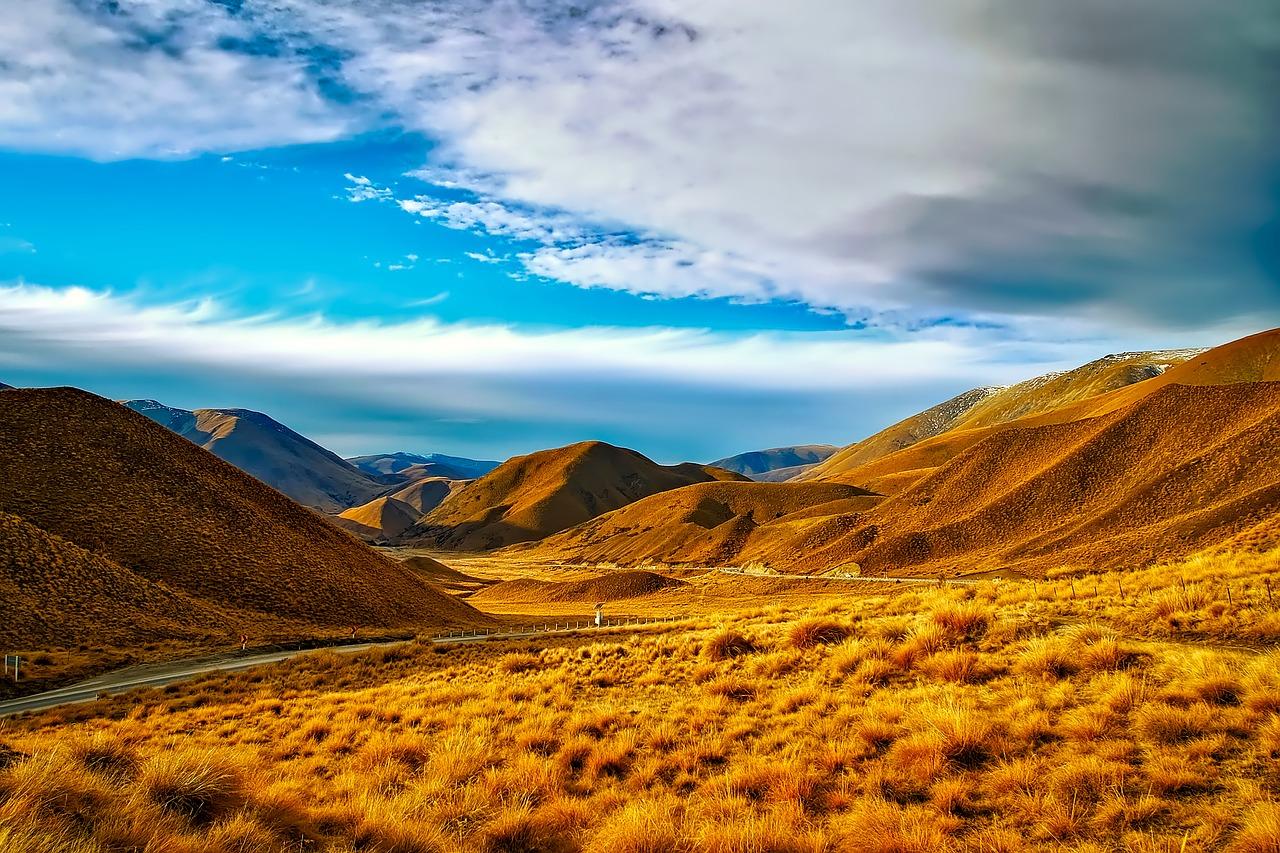 Neuseeland Detail: Abenteuerreisen